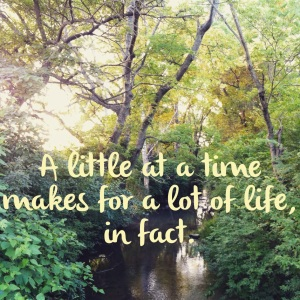 A little at a time makes for a lot of life